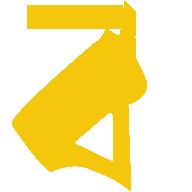 BongOnet Logo